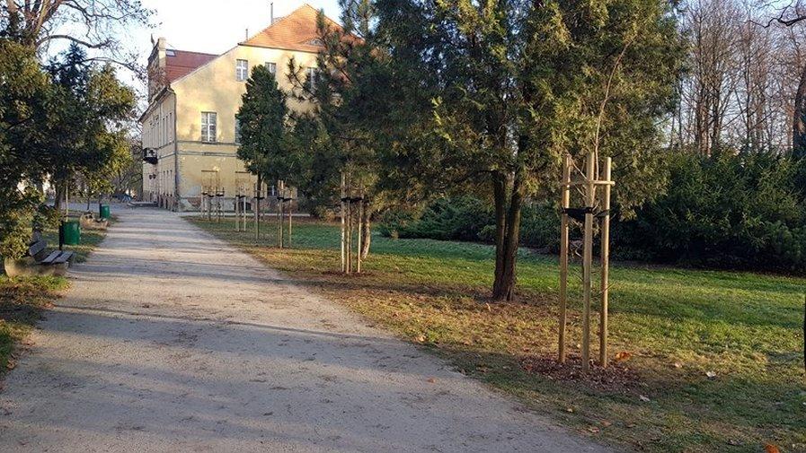 Rewaloryzacja przyrodnicza parku im. Wojska Polskiego