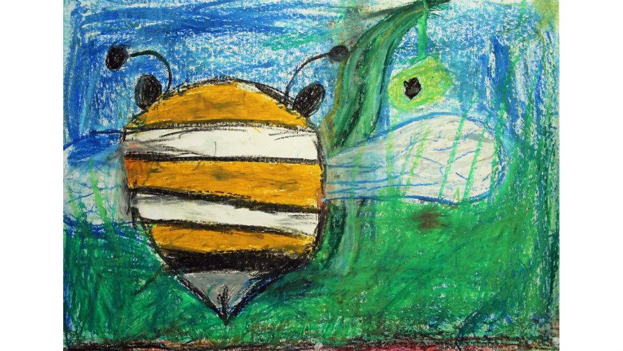 Regulamin 24. Festiwalu Dziecięcego o Tematyce Ekologicznej